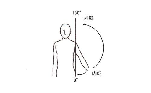 「肩関節外転」の画像検索結果